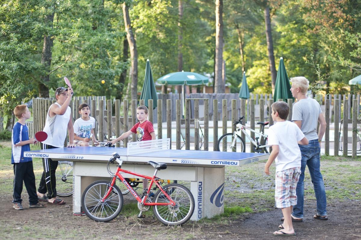 Programma delle attività estive