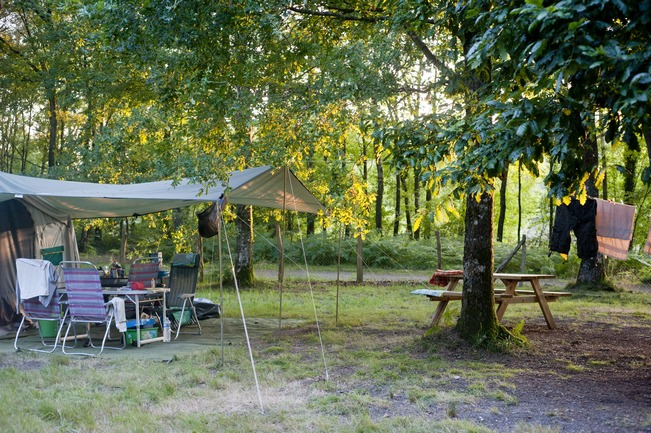 Camping+ pitches