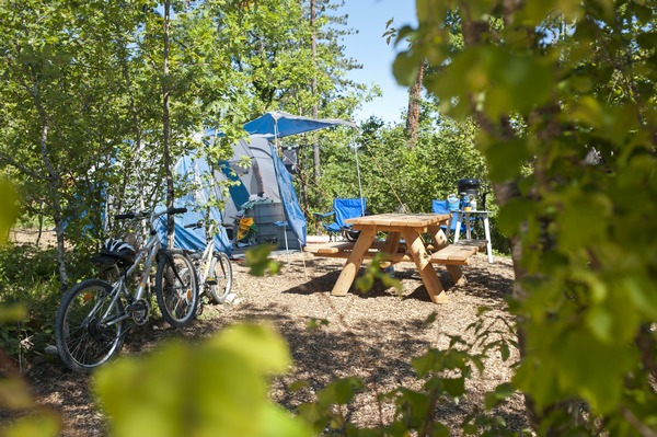 Campsite spot +