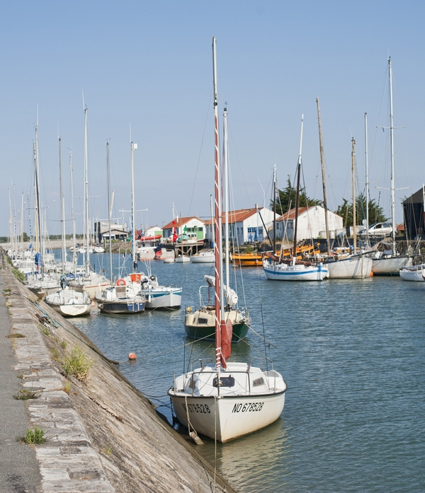 Discover the island of Noirmoutier
