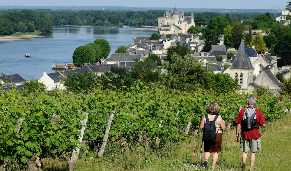 DISCOVER THE SAUMUR REGION
