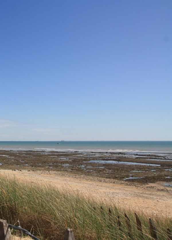 Enjoying the Atlantic Ocean...