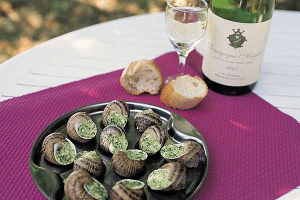 Découvrez la belle région Côte d'Or en Bourgogne