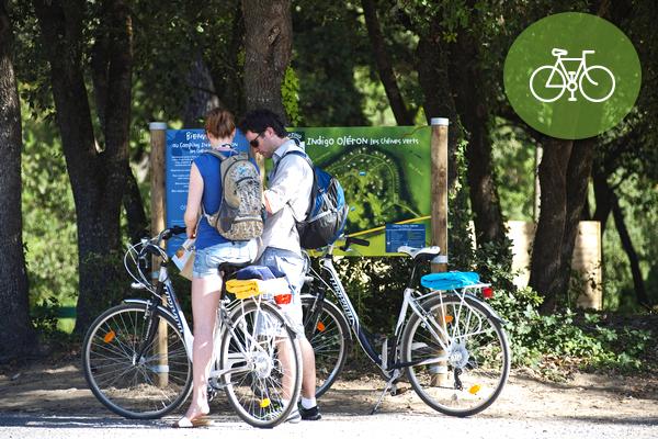 Location de vélo offerte !