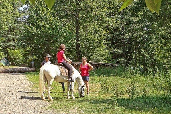 Giro con il pony