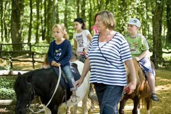 Passeggiata in pony