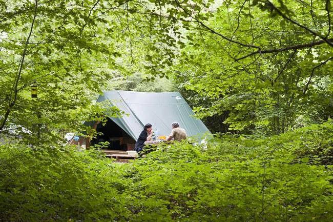 Bonaventure tent