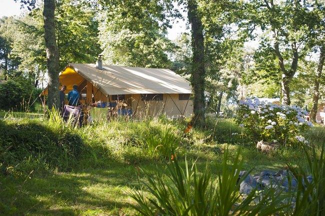 Tenda Cosy