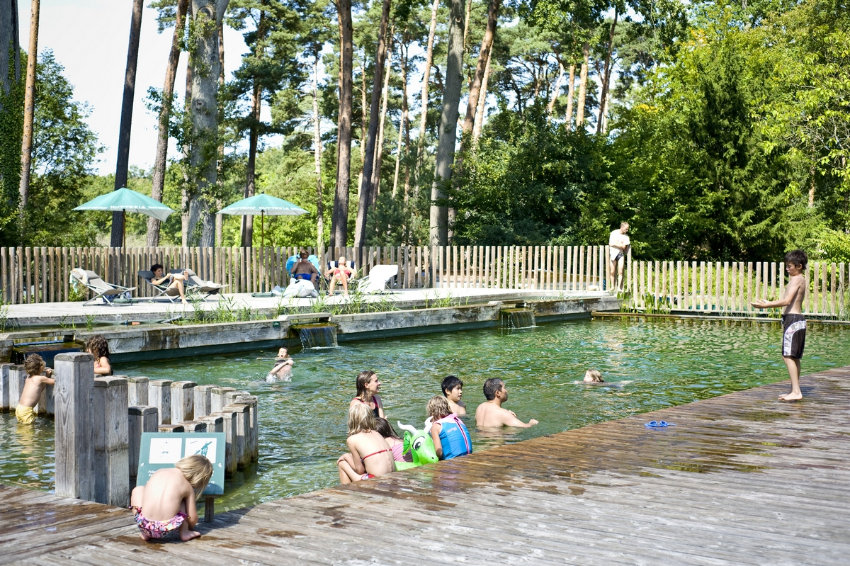 Natural swimming pool and the Etang d'Or lake
