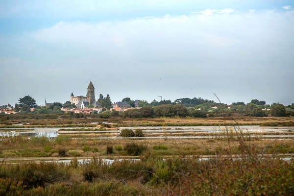 Salt marshes and unspoilt nature