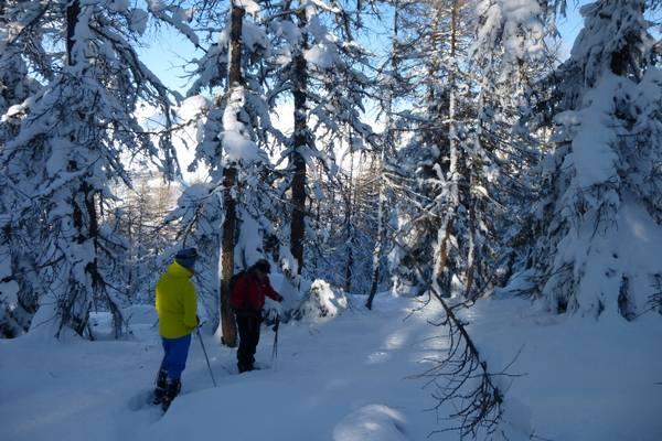 De sneeuw zonder ski's!