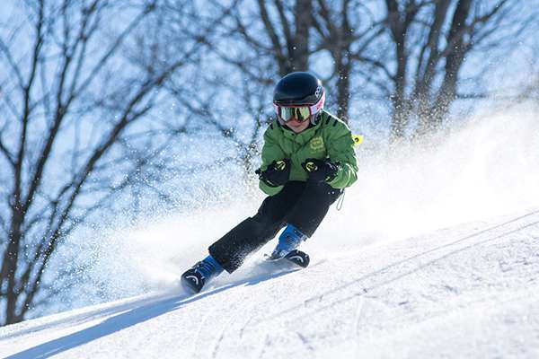 Alpine or nordic skiing