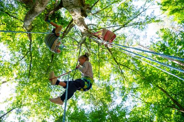 Bomenparcours