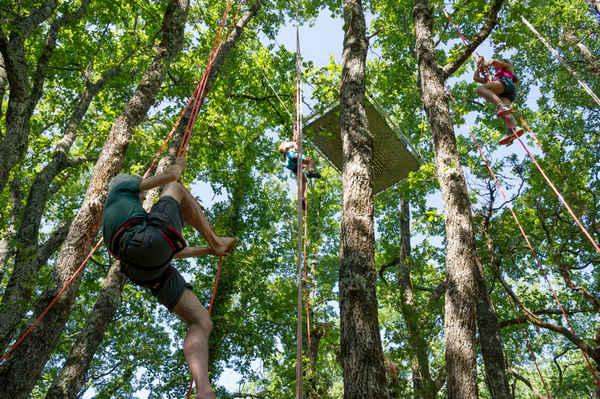 TREE-CLIMBING
